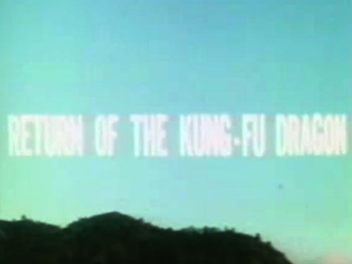 Return of the Kung Fu Dragon