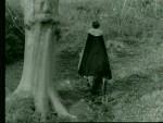 Robin Hood 038 – Richard The Lion-Heart - 1956 Image Gallery Slide 1