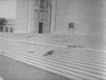 The Last Man On Earth - 1964 Image Gallery Slide 1