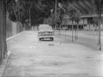 The Last Man On Earth - 1964 Image Gallery Slide 6