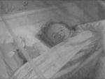 The Last Man On Earth - 1964 Image Gallery Slide 13