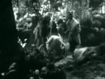 As You Like It - 1936 Image Gallery Slide 13