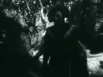 As You Like It - 1936 Image Gallery Slide 17