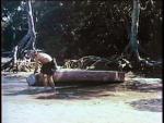Wild Women Of Wongo - 1958 Image Gallery Slide 3