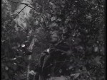 Robin Hood 062 – Fair Play - 1957 Image Gallery Slide 2