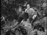 Robin hood 067 – The Black Five - 1957 Image Gallery Slide 1