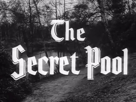 Robin Hood 063 – The Secret Pool