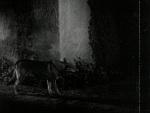 Rogue's Tavern - 1936 Image Gallery Slide 9