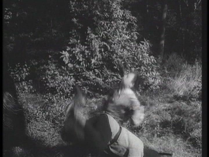 Robin Hood 054 – The Blackbird 8