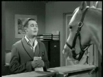Mister Ed – Ed the Beneficiary - 1962 Image Gallery Slide 2