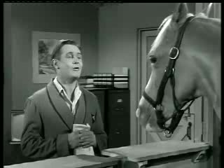 Mister Ed – Ed the Beneficiary 2