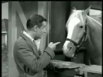 Mister Ed – Ed the Beneficiary - 1962 Image Gallery Slide 3