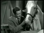 Mister Ed – Ed the Beneficiary - 1962 Image Gallery Slide 10