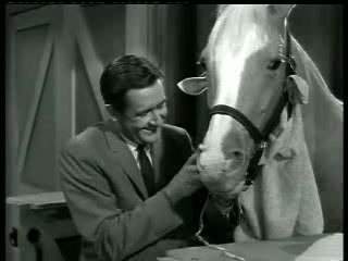 Mister Ed – Ed the Beneficiary 10