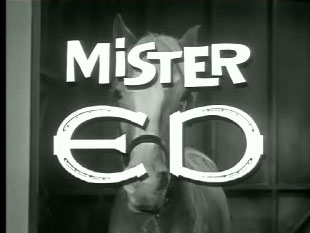 Mister Ed – Ed the Beneficiary