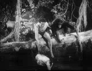 Tarzan's Revenge 7