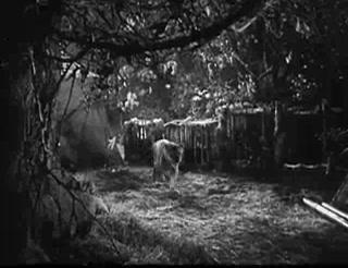 Tarzan's Revenge 8