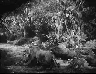Tarzan's Revenge 9