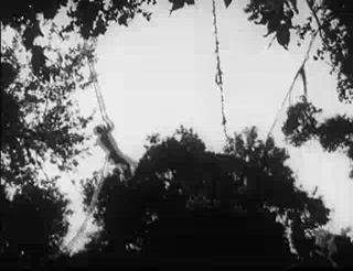 Tarzan's Revenge 12