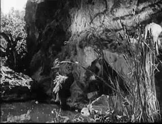 Tarzan's Revenge 13