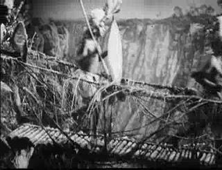 Tarzan's Revenge 16