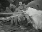 Bees in Paradise - 1944 Image Gallery Slide 3