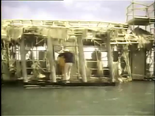 Rescue from Gilligan's Island 7