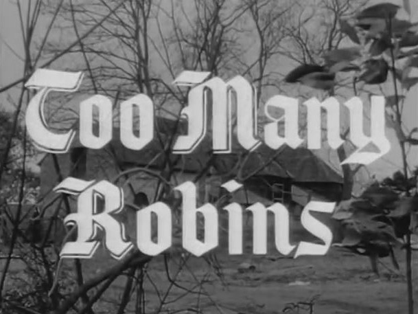 Robin Hood 099 – Too Many Robins