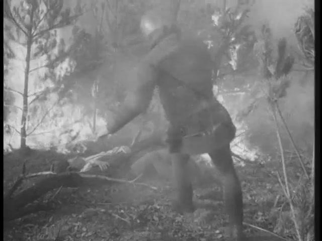 Robin Hood 110 – The Fire 17