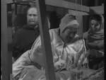 Robin Hood 113 – Lincoln Green - 1958 Image Gallery Slide 8