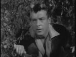 Robin Hood 095 – Knight Errant - 1958 Image Gallery Slide 4