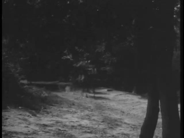 Robin Hood 118 – Sybella 7