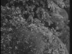 Robin Hood 122 – The Flying Sorcerer - 1958 Image Gallery Slide 16