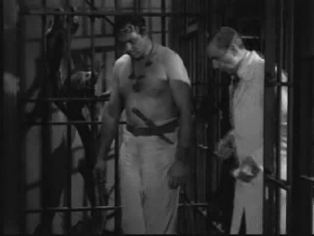 Bela Lugosi Meets a Brooklyn Gorilla 8