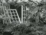 Bride of the Gorilla - 1951 Image Gallery Slide 2