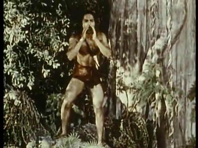 Jungle Book 7