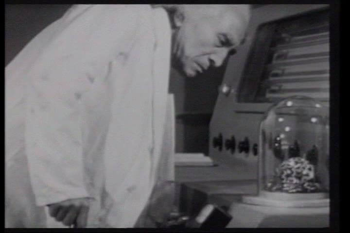 Evil Brain From Outer Space 7