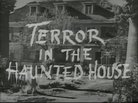 Terror in the Haunted House