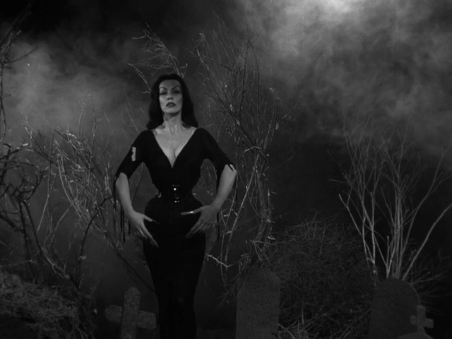 Plan 9 From Outer Space 6